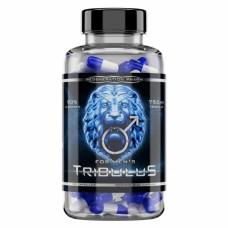 Reg Pharm Tribulus 90% saponins 90 капс